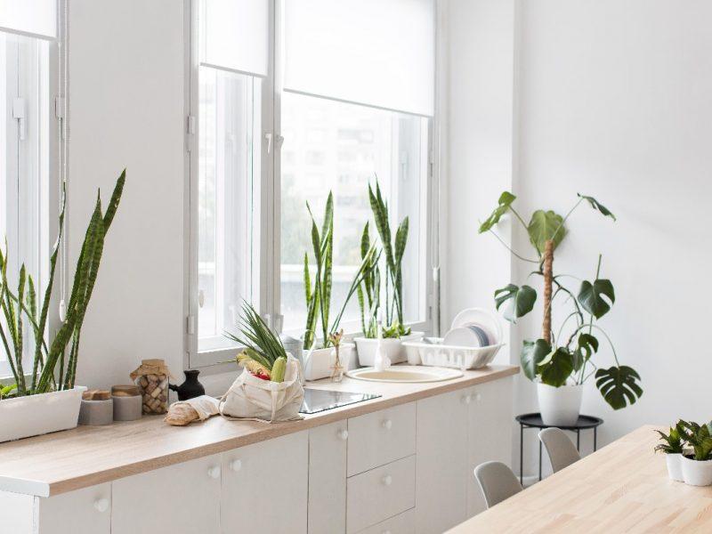 Kuchnia w stylu eko – pomysły na urządzenie, materiały i dekoracje